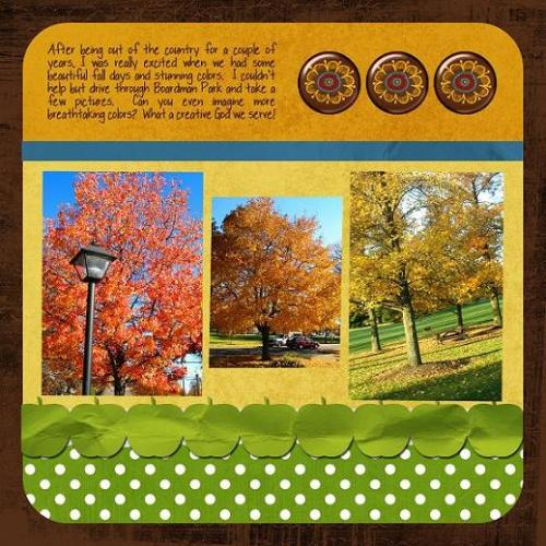 ohio-fall-side-2-copy